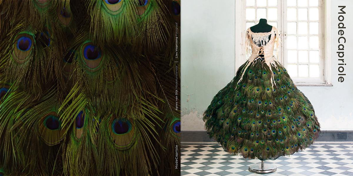 Agnes - Cover - ModeCapriole Agnes van Dijk fasionart, modekunst, modecapriole, fashion, mode, Eindhoven, the netherlands, nederland
