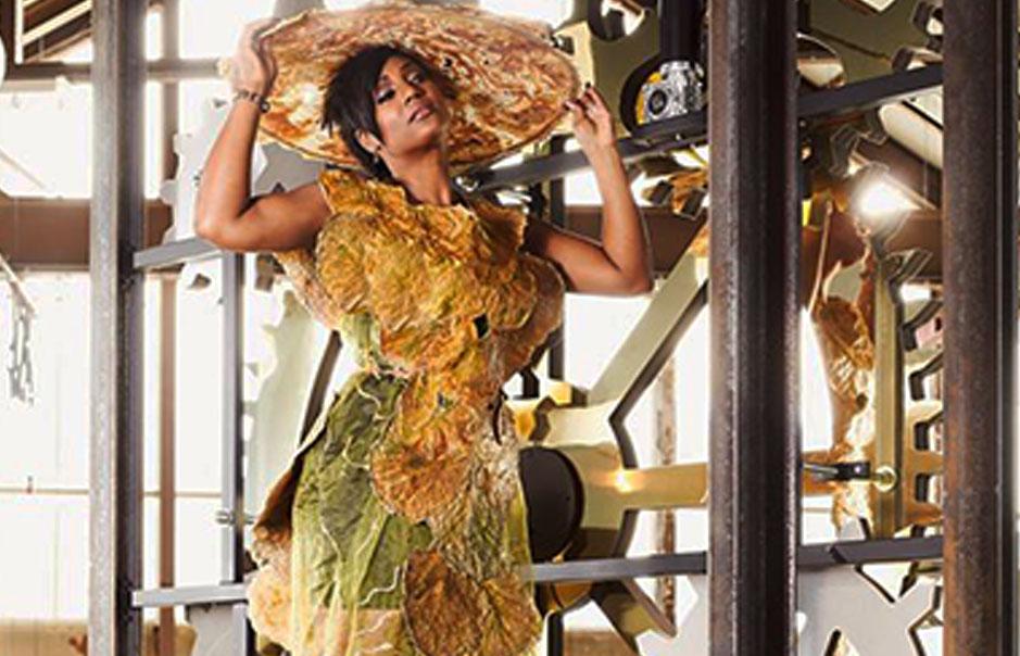 Agnes van Dijk fasionart, modekunst, modecapriole, fashion, mode, Eindhoven, the netherlands, nederland edsilia rombley