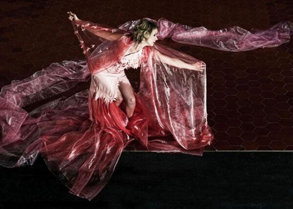 portfolio hormonetta Agnes van Dijk modekunst eindhoven theater DDW